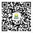 WeChat Official Account